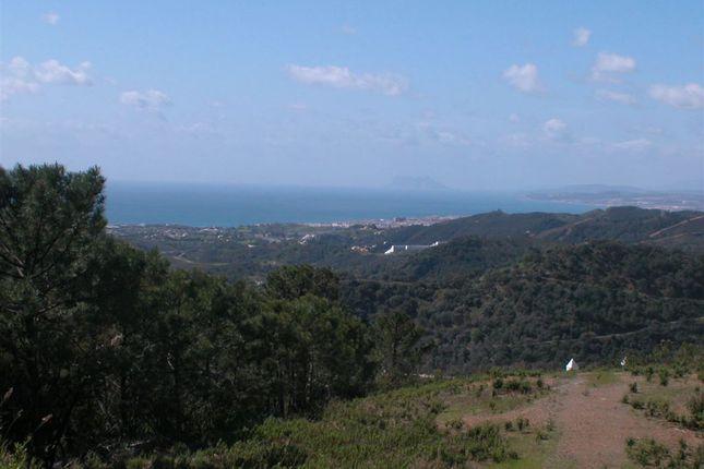 Thumbnail Land for sale in Estepona, Málaga, Andalusia, Spain