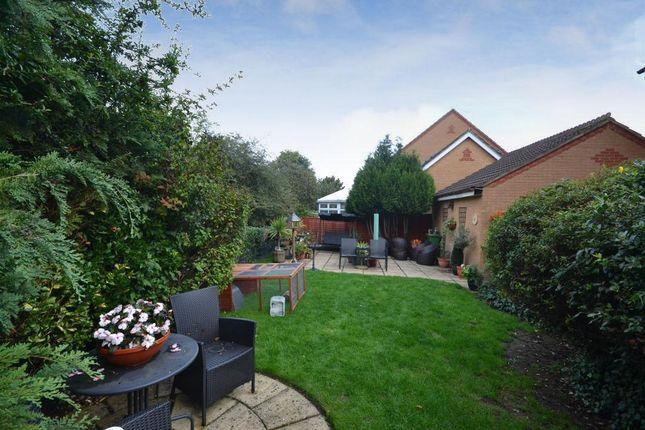 Garden of Stagshaw Grove, Emerson Valley, Milton Keynes, Buckinghamshire MK4
