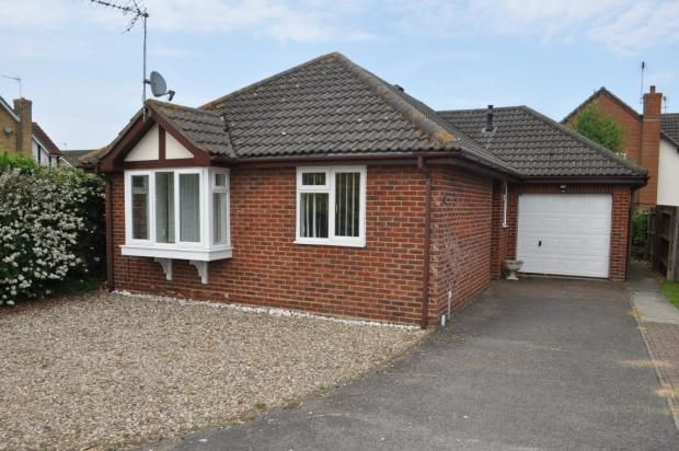Thumbnail 3 bed bungalow to rent in Cranwell Grove, Kesgrave, Ipswich