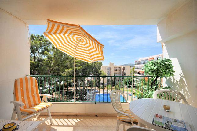 1 Bed Apartment For In Villamar Apartments Palmanova Palma De Mallorca Majorca