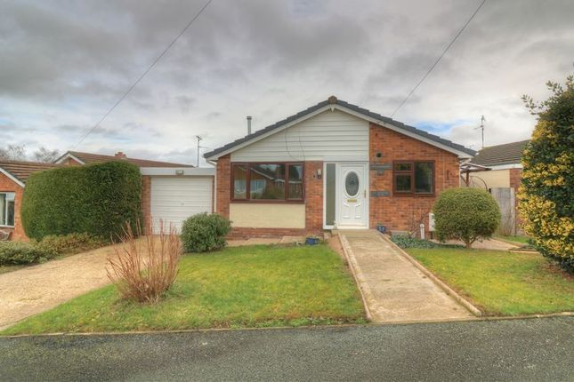 Thumbnail Detached bungalow for sale in Agincourt Drive, Guilsfield, Welshpool