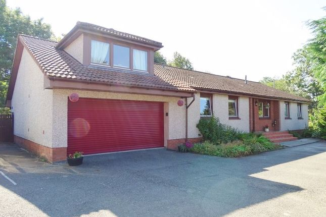 Thumbnail Detached bungalow for sale in Burnee, Fishcross, Alloa