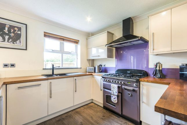Thumbnail Detached house to rent in Charlock Drive, Stamford