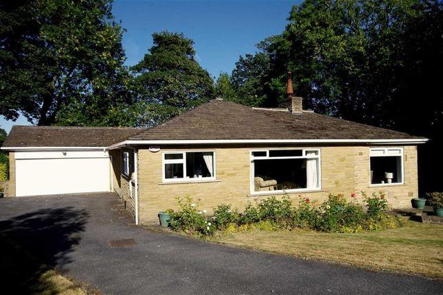 Thumbnail Detached bungalow for sale in Craiglands, Hipperholme, Halifax