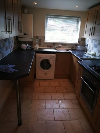 Thumbnail Duplex to rent in Sketty Park Dr, Swansea