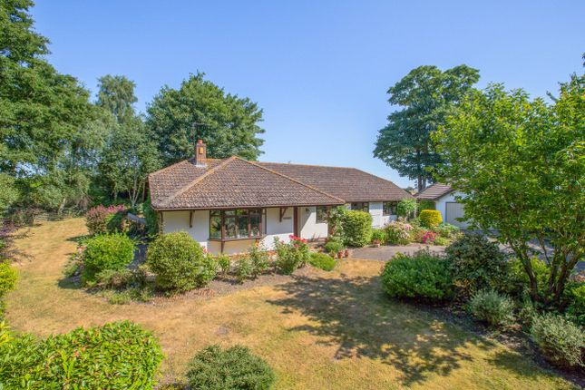 Thumbnail Detached bungalow to rent in Sowton Village, Exeter