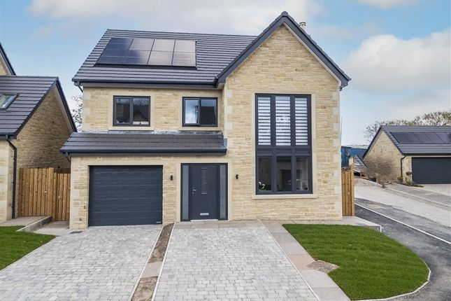 Thumbnail Property for sale in 6 Forest View Place, Preston