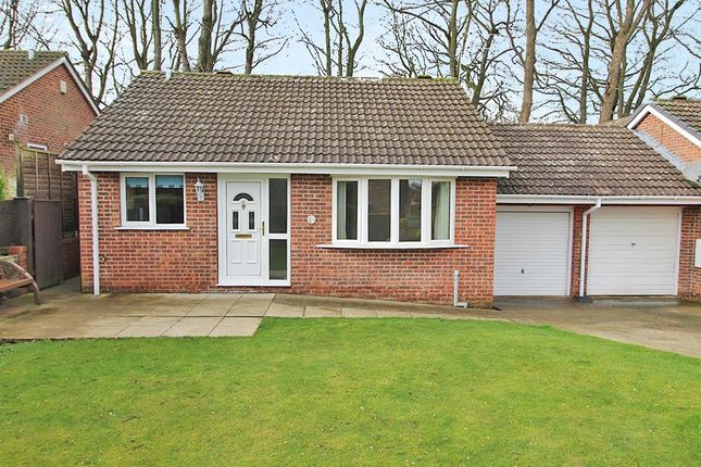 Thumbnail Detached bungalow for sale in Old Trough Way, Harrogate