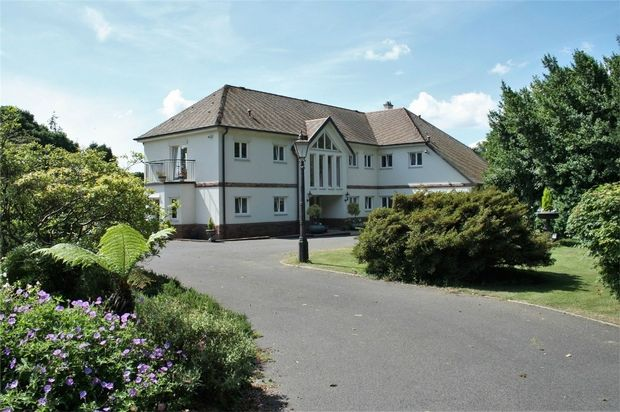 Thumbnail Detached house for sale in Hightown Hill, Ringwood, Hampshire