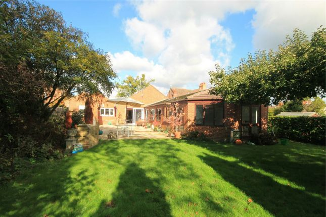 Thumbnail Detached bungalow for sale in Upper Bucklebury, Reading, Berkshire
