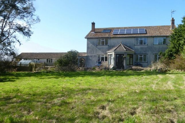 Thumbnail Detached house for sale in Stone Allerton, Axbridge