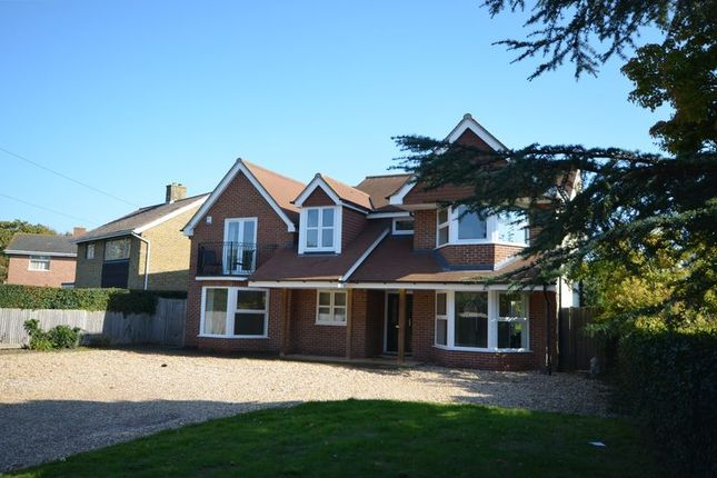 Thumbnail Detached house to rent in Old Street, Hill Head, Fareham