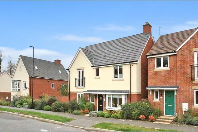 Thumbnail Property to rent in Lower Lodge Avenue, Rugby