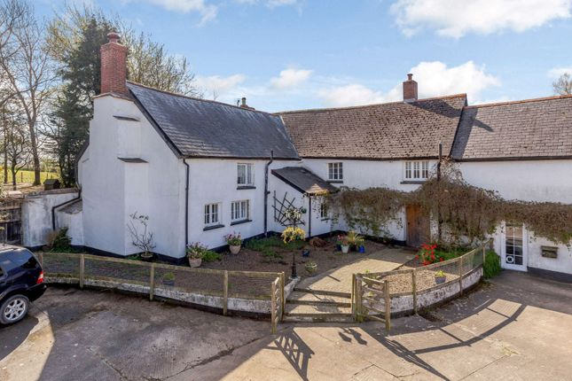 Thumbnail Semi-detached house for sale in North Tawton