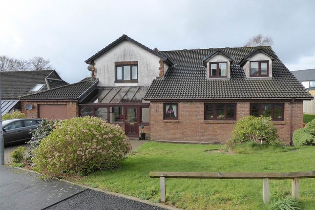 Thumbnail Detached house to rent in Maesglasnant, Cwmffrwd, Carmarthen