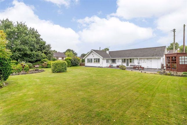 Thumbnail Bungalow for sale in Chepstow Road, Crick, Monmouthshire
