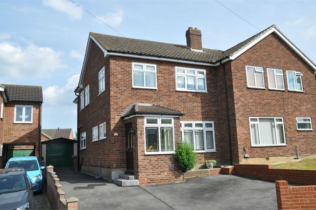 Thumbnail Semi-detached house for sale in Alder Drive, Chelmsford, Essex