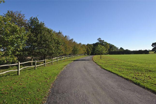 Driveway of Lock, Partridge Green, Horsham, West Sussex RH13