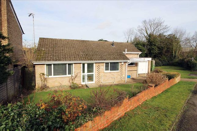Thumbnail Detached bungalow for sale in Chestnut Rise, Bushey WD23.