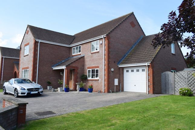 Thumbnail Detached house for sale in Back Lane, Westhay, Glastonbury