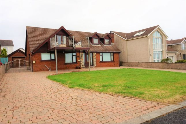 Thumbnail Detached house for sale in The Horse Park, Carrickfergus