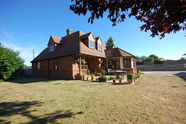 Thumbnail Detached house for sale in Burnham Road, Latchingdon, Essex