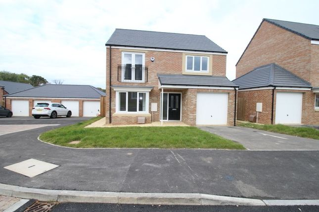 Thumbnail Detached house for sale in Evergreen Way, Marton-In-Cleveland, Middlesbrough