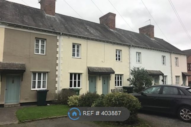 Thumbnail Terraced house to rent in Newhall Gardens, Shrewsbury