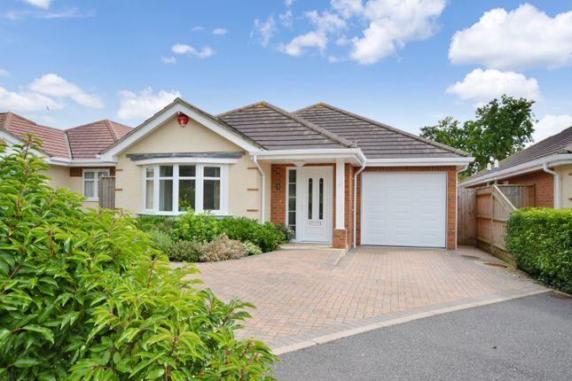 Thumbnail Detached bungalow for sale in Heathlands, Heath Road, Hordle