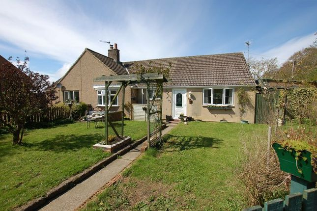 Thumbnail Bungalow for sale in Oakford, Scots Gap, Morpeth