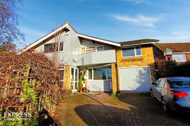 Thumbnail Detached house for sale in Melford Road, Sudbury, Suffolk