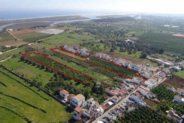 Thumbnail Land for sale in Portugal, Algarve, Tavira