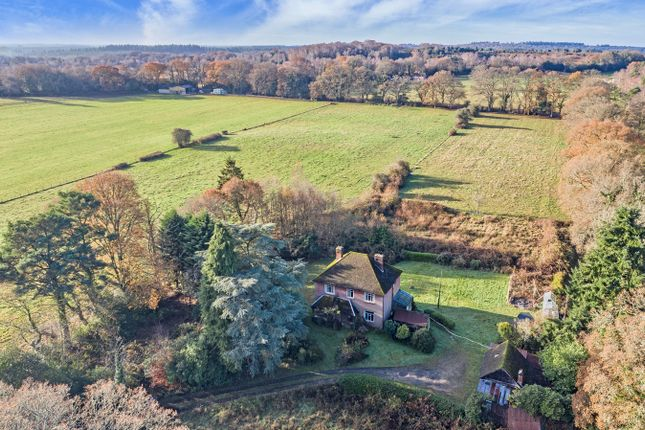 Thumbnail Detached house for sale in Emery Down, Lyndhurst