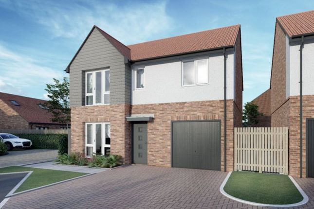 Thumbnail Detached house for sale in Hays Gardens (Plot 70), Hartlepool