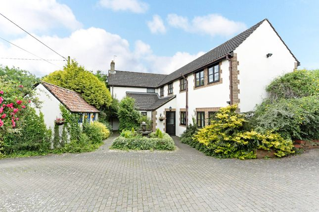 Thumbnail Detached house for sale in New Zealand, Calne