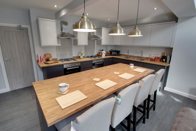Thumbnail Semi-detached house to rent in Hazel Drive, Leicester