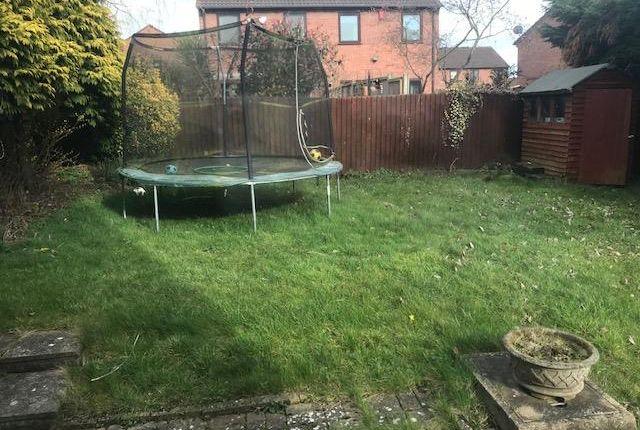 Garden of Salcombe Close, Nuneaton CV11