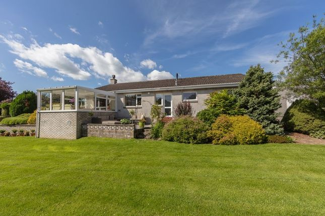 Thumbnail Detached bungalow for sale in Amulree, 7 Grantsfield, Melrose