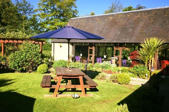 Thumbnail Restaurant/cafe for sale in Torphichen, West Glamorgan