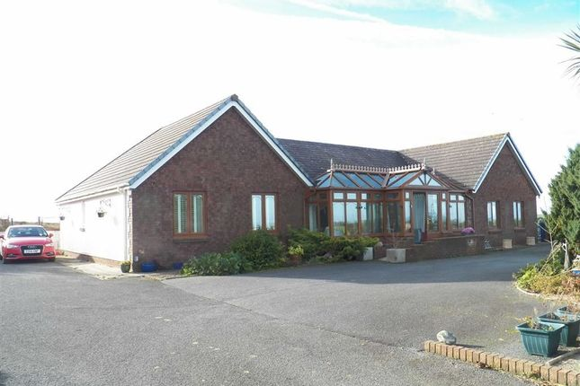 Thumbnail Detached bungalow for sale in Felinwynt, Cardigan