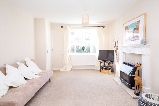 Thumbnail Detached house to rent in Hornbeam Close, York