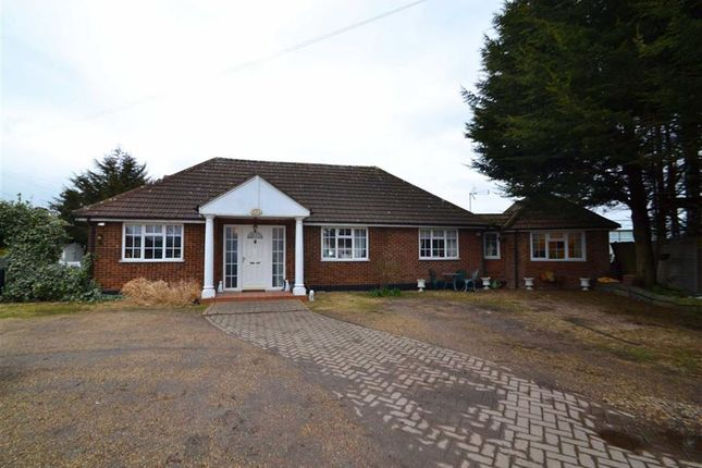 Thumbnail Bungalow for sale in Old House Lane, Roydon, Essex