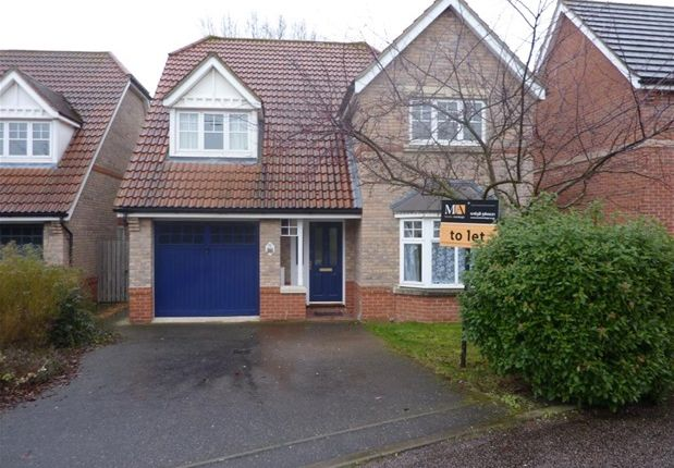 Thumbnail Detached house to rent in Heasman Close, Newmarket