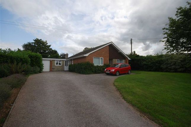 Thumbnail Detached bungalow to rent in The Ryders, Ledbury, Herefordshire