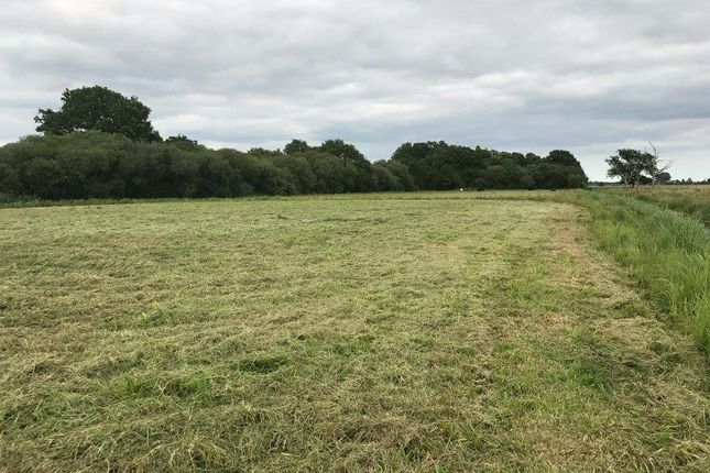 Thumbnail Land for sale in Lower Road, Rockland St. Mary, Norwich
