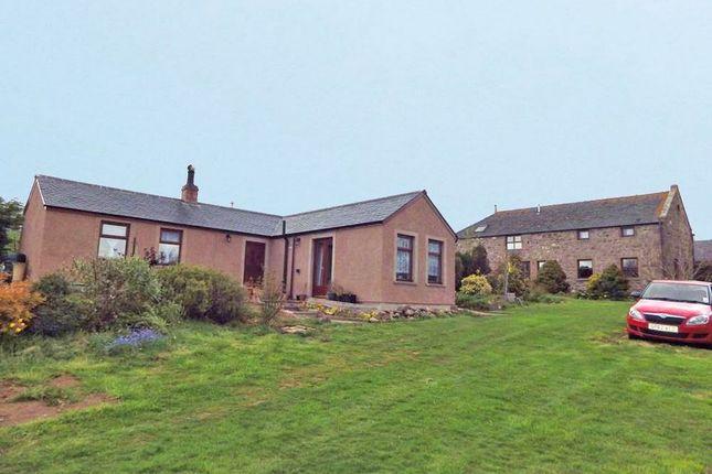 Thumbnail Detached house for sale in Johnshaven, Montrose