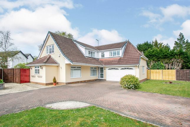 3 bed detached bungalow for sale in Ringwood Road, Verwood BH31