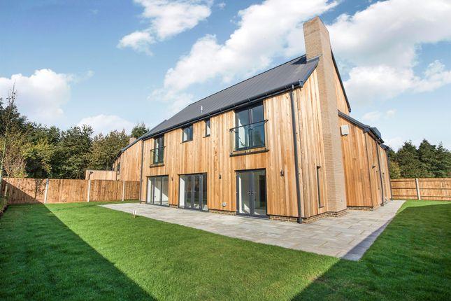 Thumbnail Detached house for sale in West Motney Way, Rainham, Gillingham