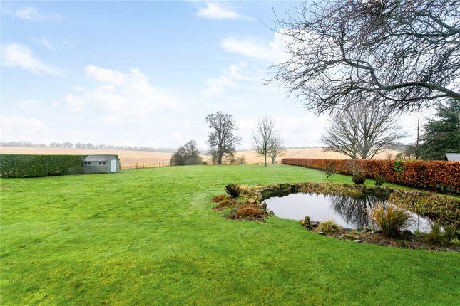 Gardens of Queensfield, Dummer, Basingstoke, Hampshire RG25