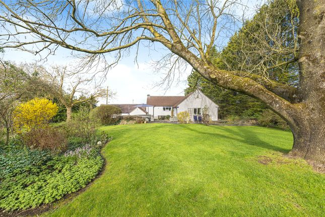 Thumbnail Country house for sale in Manor Road, Wick, South Gloucestershire